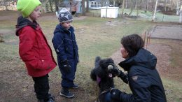 Skolhunden Aramis med kompisar och instruktör.