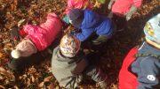 Förskolebarn i höstlöv